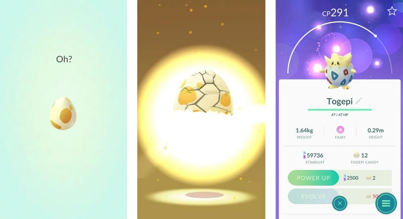 hatch the eggs without walking